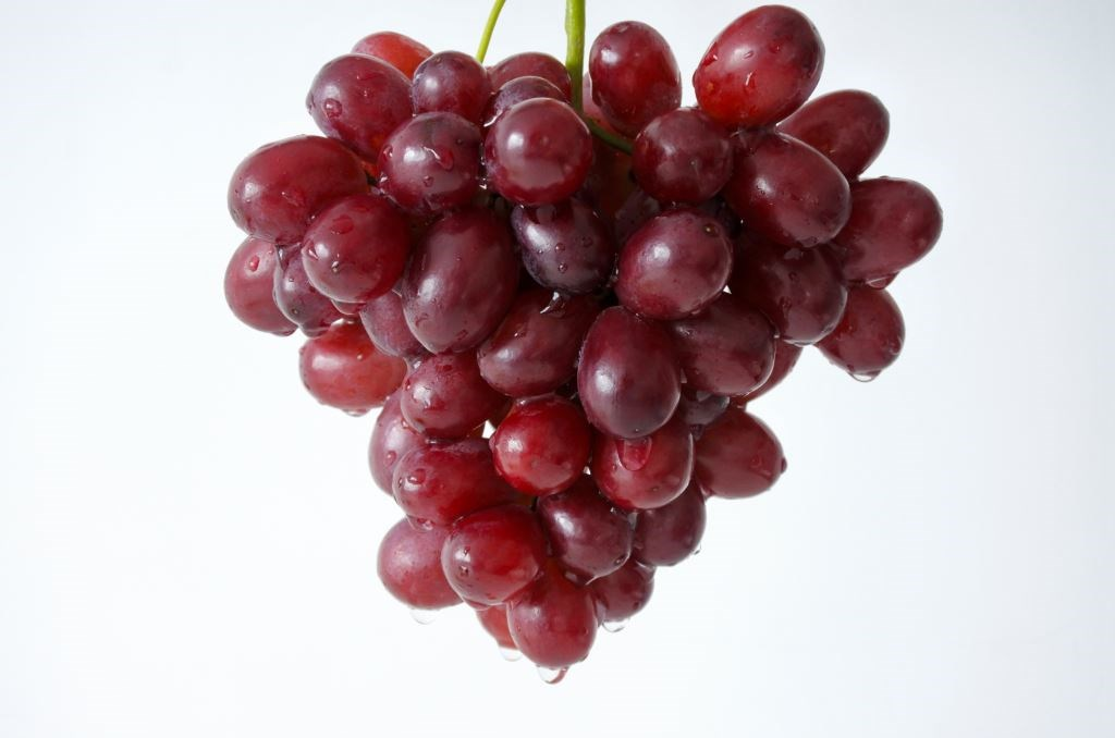 The importance of the grape variety